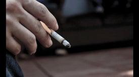Fumar adelgaza... la corteza del cerebro