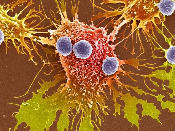 Prueban por primera vez en un humano la técnica de edición de genes CRISPR