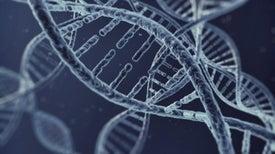 Prometedoras terapias génicas plantean un acertijo de un millón de dólares