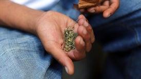 Sustitutos sintéticos de la marihuana no son seguros, según un estudio