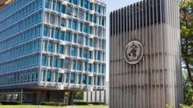 OMS declara al Zika como una emergencia sanitaria mundial