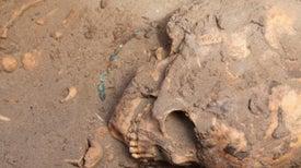 Tumbas revelan intercambio cultural entre egipcios y nubios hace 3.500 años