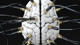 El cableado de su cerebro revela su verdadero yo