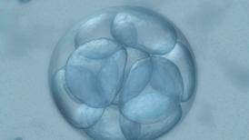 Hacer dinero con genes: la técnica CRISPR se vuelve comercial