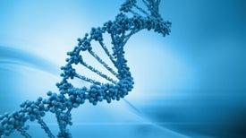¿Los genes determinan cuándo perdemos la virginidad?