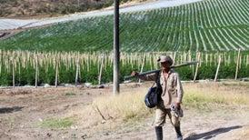 Colombia tras la violencia