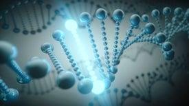 Un software promete hacer más fácil la programación de células vivas