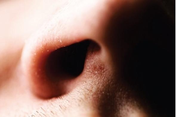 Químicos descubren por qué la nariz es tan sensible a los olores sulfurosos
