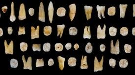 Los humanos habitan China desde hace más de 80.000 años