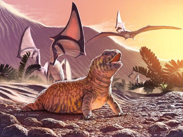 Fósil de lagarto hallado en Brasil da un vuelco a la evolución de estos reptiles