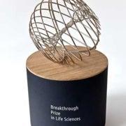 Seis premios, de $3 millones cada uno, reconocen a la investigación básica