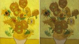 Tintes inestables son los responsables de que los girasoles de Van Gogh se estén destiñendo