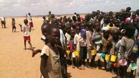 Descubren una variación genética que protege a niños africanos de la malaria