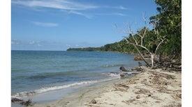 En las playas de Costa Rica, científicos hallan una posible arma contra una bacteria multirresistente