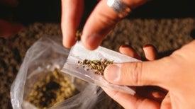 Empresas uruguayas podrán controlar consumo de marihuana en sus trabajadores