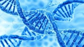 Investigaciones de edición de genes deberían proseguir con cautela, concluyen científicos