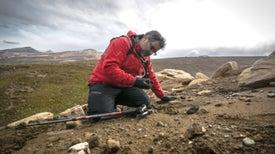 Fósiles de Chile y Antártica revelan los últimos 'minutos geológicos' de la era de los dinosaurios
