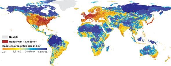 Caminos y carreteras fragmentan la superficie –y los ecosistemas– del planeta