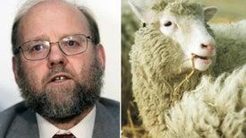 A 20 años de Dolly: la historia detrás de la oveja más famosa del mundo