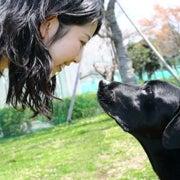 ¿Es esa enternecedora mirada de su perro una señal de amor?