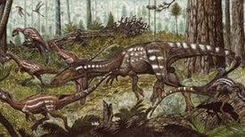 Fósil hallado en Venezuela cuenta el pasado de los dinosaurios carnívoros