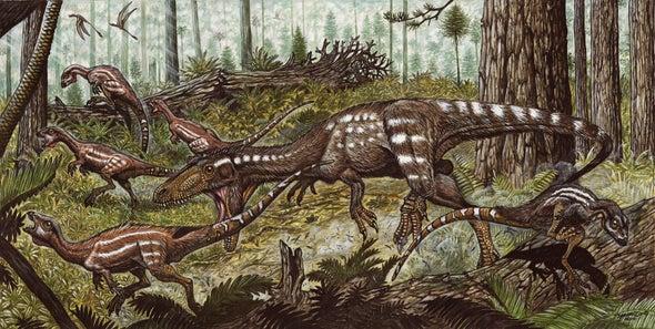 Fosil Hallado En Venezuela Cuenta El Pasado De Los Dinosaurios Carnivoros Scientific American Espanol Los dinosaurios de juguete son nuestra pasión, comienza tu colección con un dinosaurio schleich elige el tuyo en nuestra selección de dinosaurios de juguete de marketlace, y adentrarte en un. fosil hallado en venezuela cuenta el