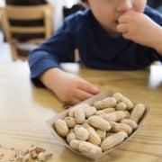 ¿Deberían más niños comer nueces?