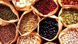 Cali resguarda nuestras semillas para la posteridad