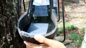 Llantas de desecho se transforman en trampas para mosquitos