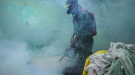 OMS advierte que virus de Zika podría propagarse a Europa en los próximos meses