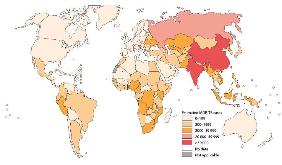 global%20tb%202013.jpg