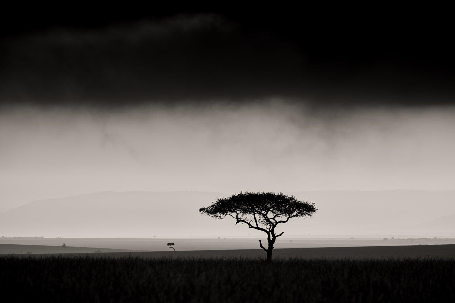 Panoramic view of the plains of Kenya.
