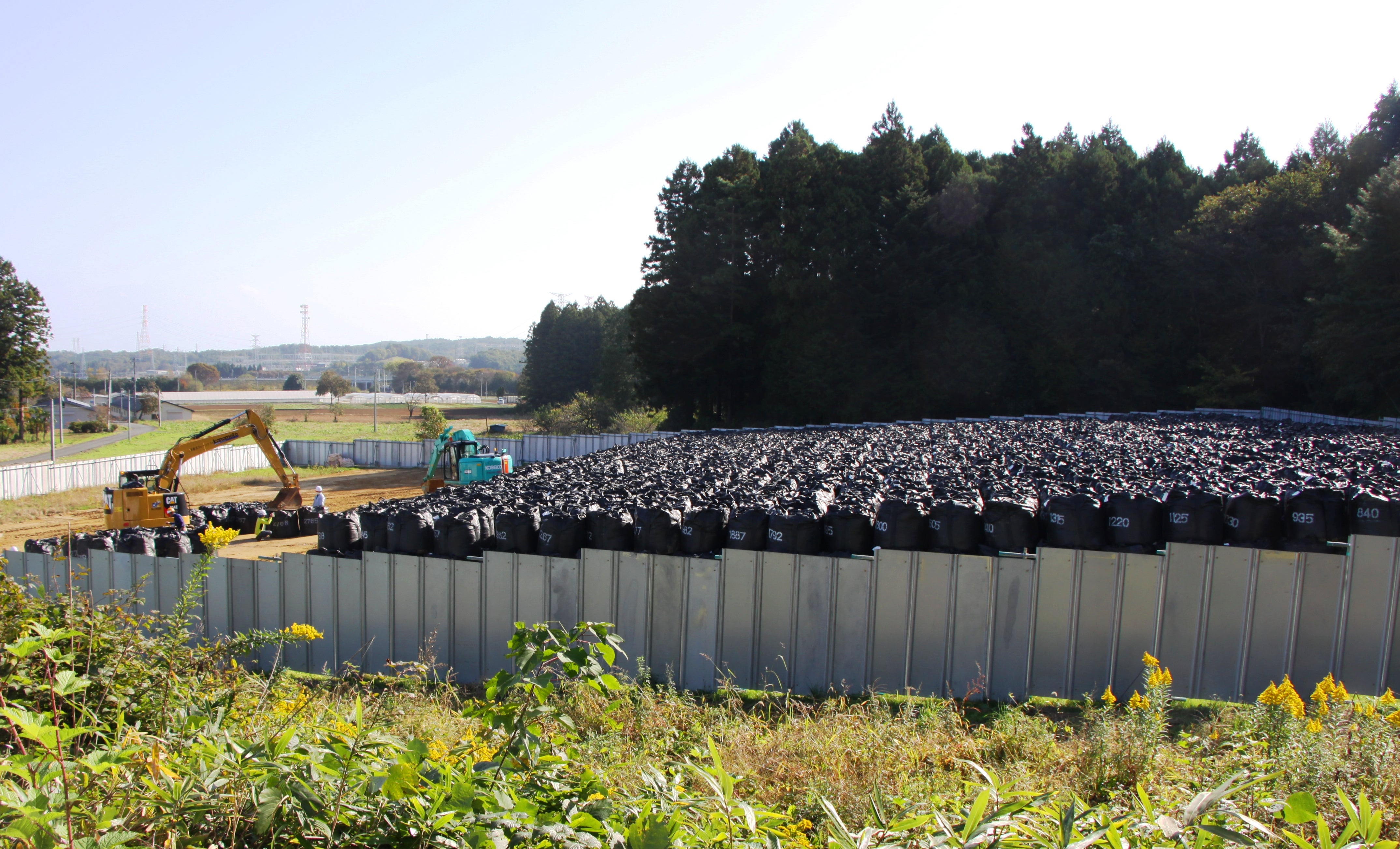 Fukushima Residents Return Despite Radiation - Scientific