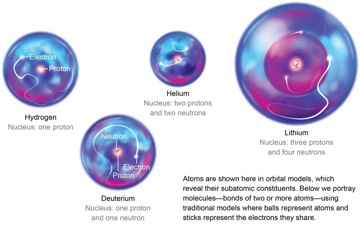 Hydrogen (1 proton, 1 electron); deuterium (1 proton, 1 neutron, 1 electron); helium (2 protons, 2 neutrons, 2 electrons) and lithium (3 protons, 4 neutrons, 3 electrons)