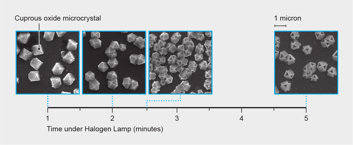 Series of four micrographs shows how cuprous oxide microcrystals are hollowed out under a halogen lamp over a five-minute period