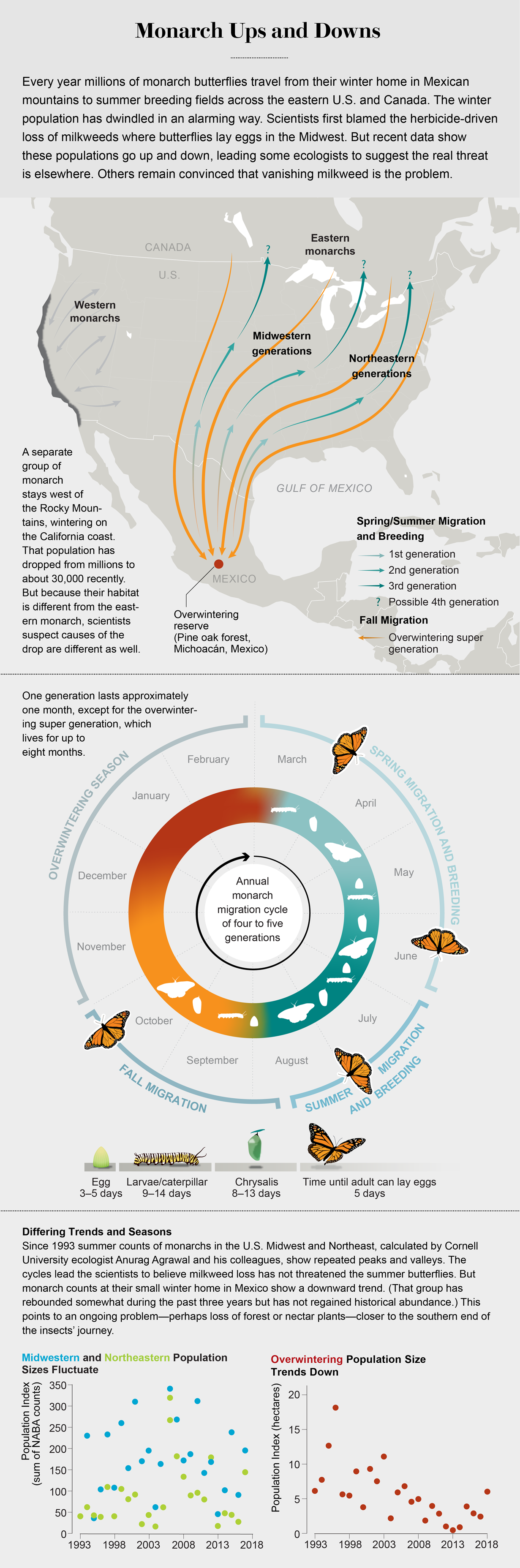 Charts show that winter monarch butterfly population size in Mexico has trended down (1993–2019); spring and summer populations have fluctuated. A migration map and life-cycle diagram provide more context