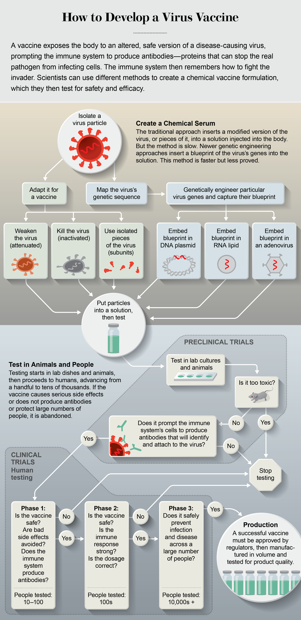Flow chart outlines the steps of vaccine development, from isolating a virus particle to creating a chemical serum and testing for safety and efficacy