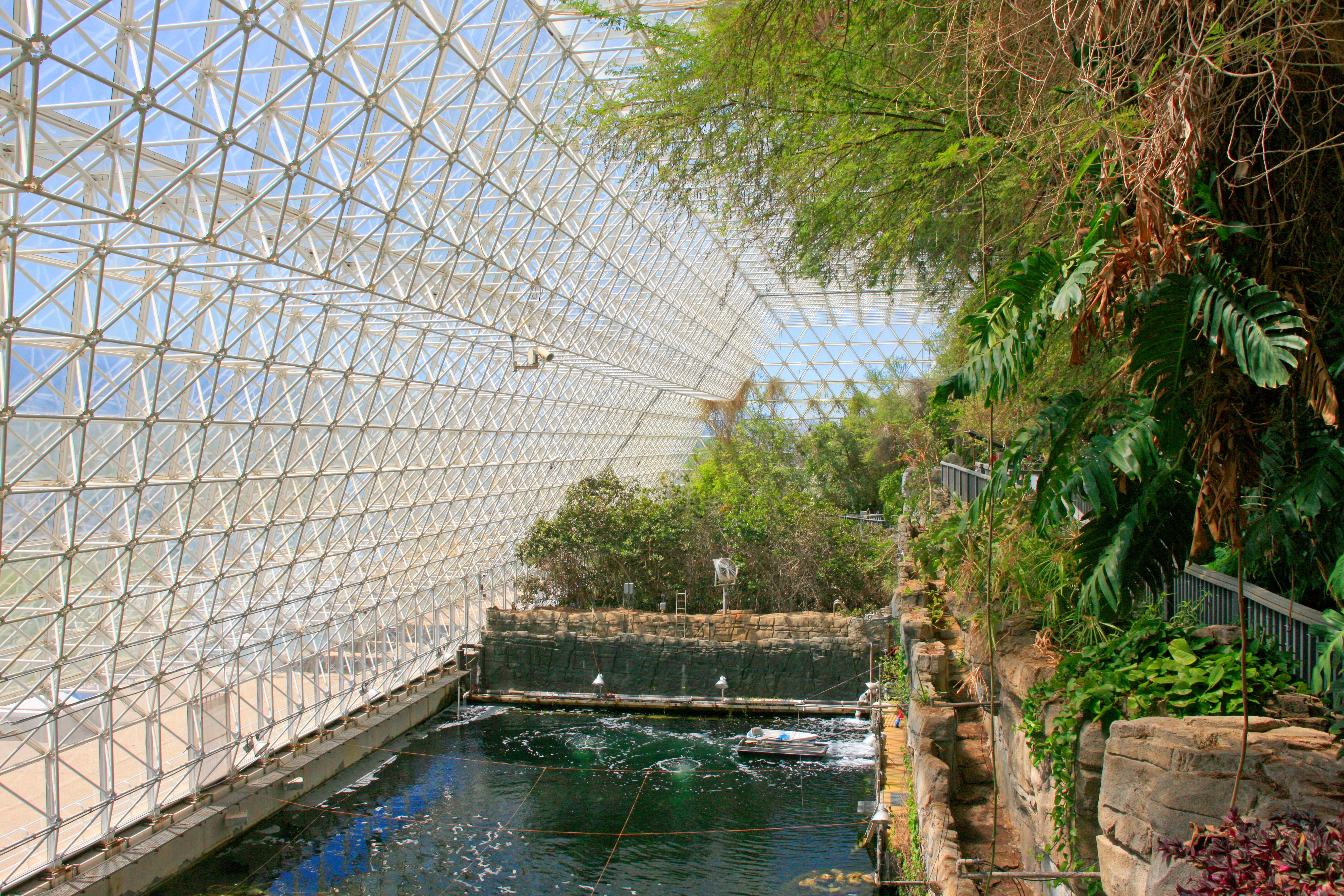 The rainforest area at Biosphere 2.