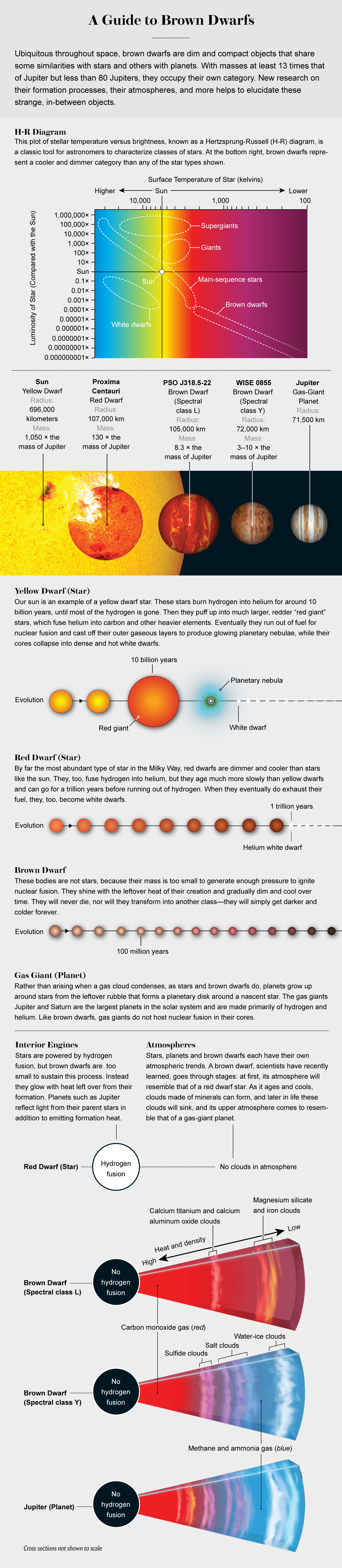 Graphic compares brown, yellow and red dwarfs and gas giants, highlighting attributes such as size, evolution and atmosphere.
