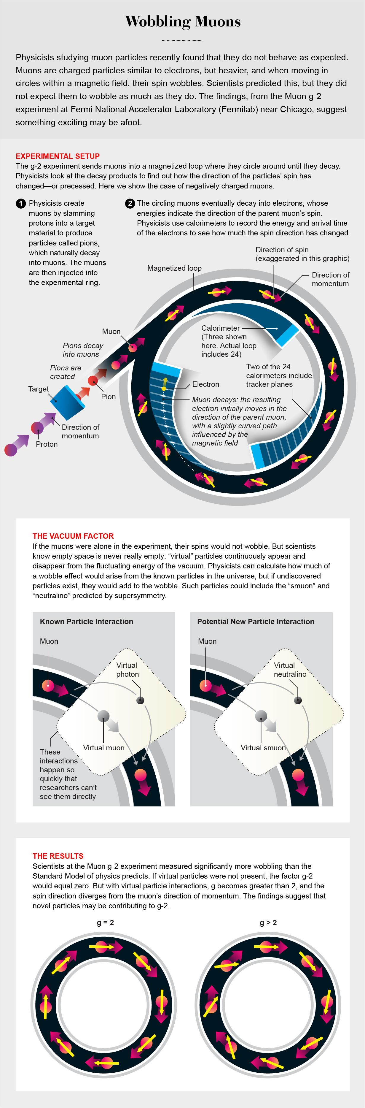 Graphic shows setup of Muon g-2 experiment and particle interactions that may cause muons' spins to wobble so much.