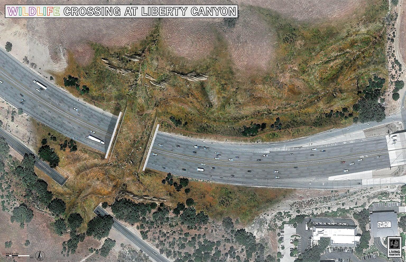 A wildlife bridge to be built across Highway 101, shown in an artist's rendition.