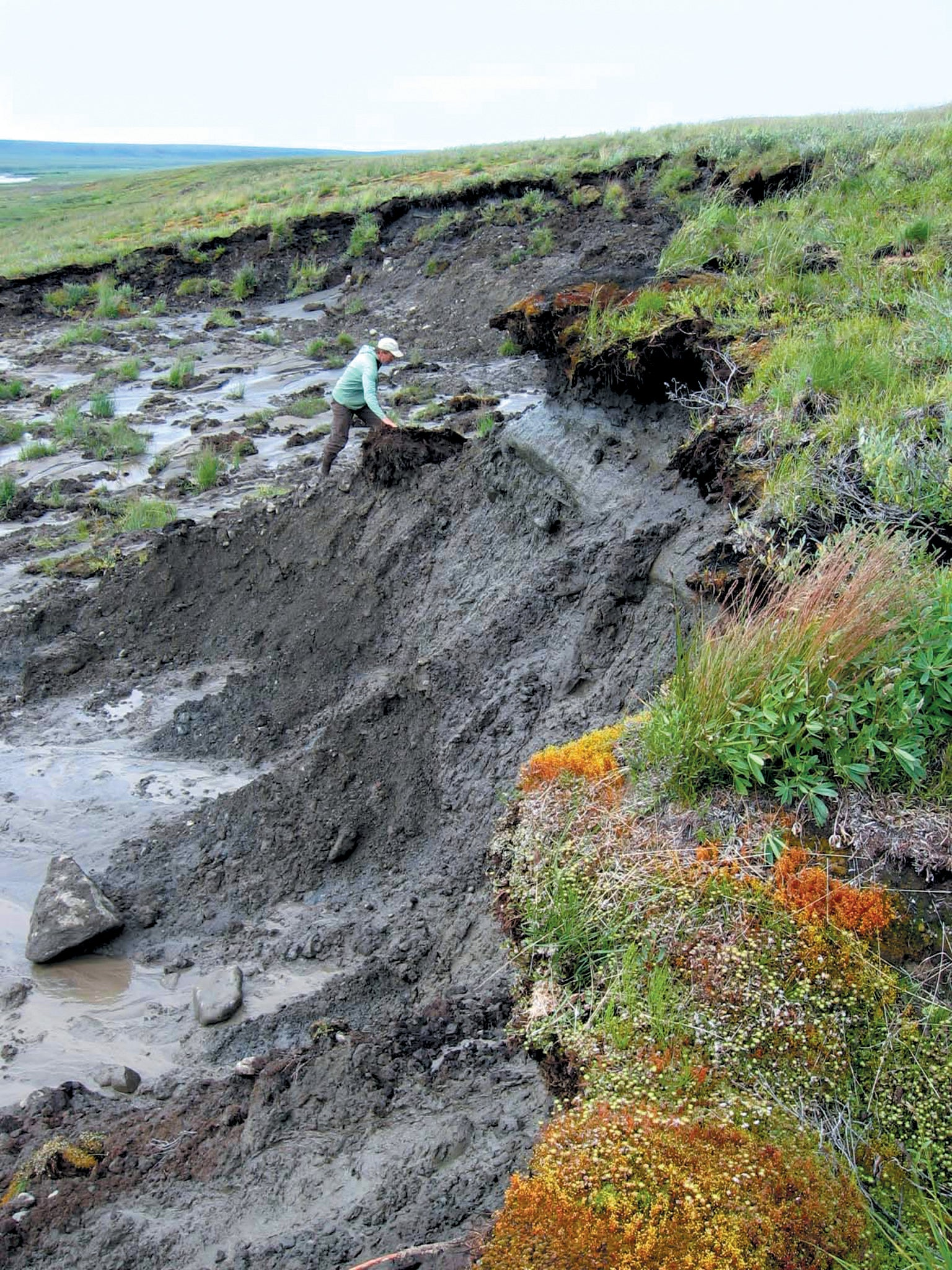 Sinkholes exposing permafrost and ice wedges.
