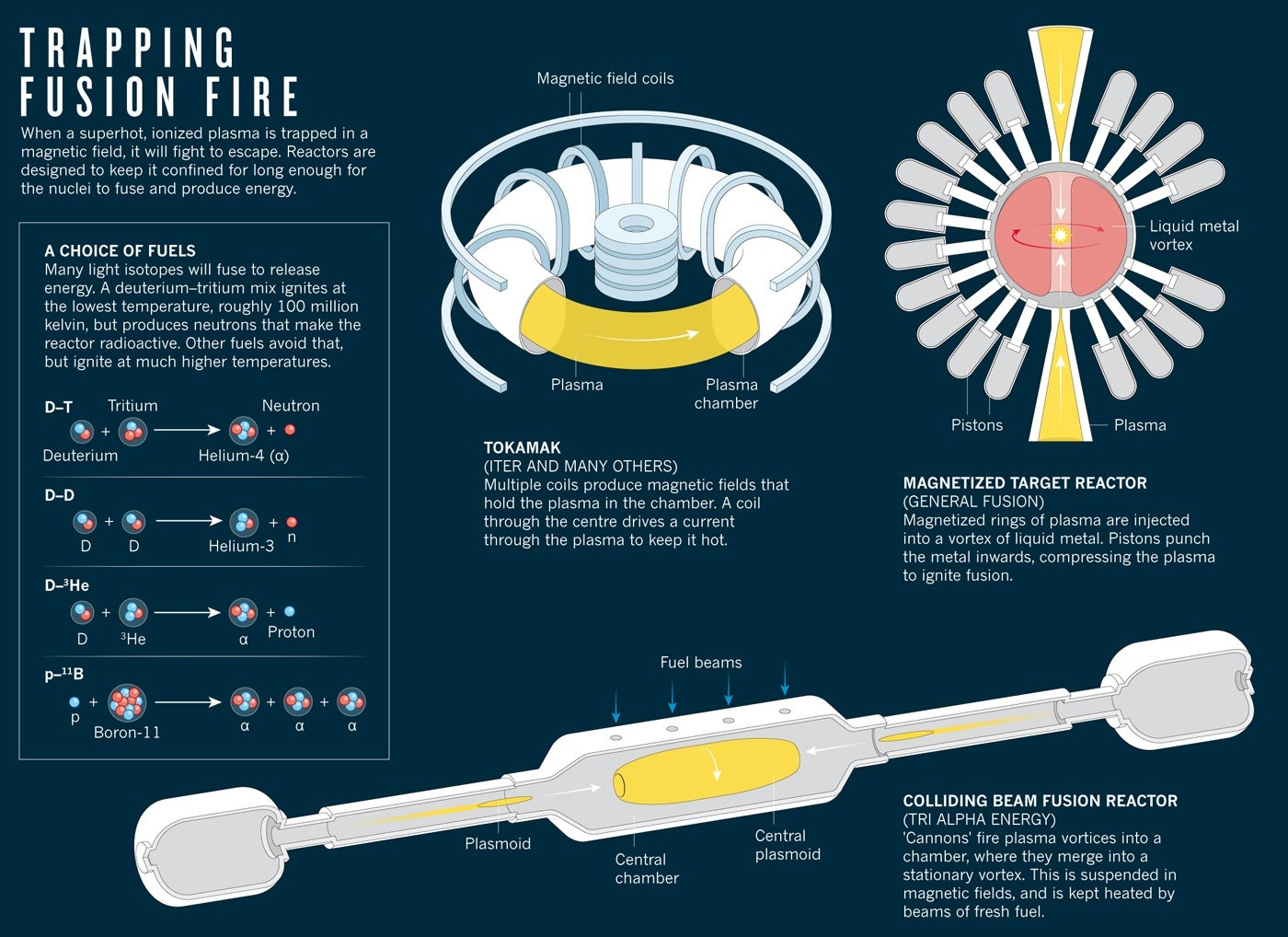 Alternative Fusion Technologies Heat Up Scientific American The Worlds Largest Reactor Click To Enlarge
