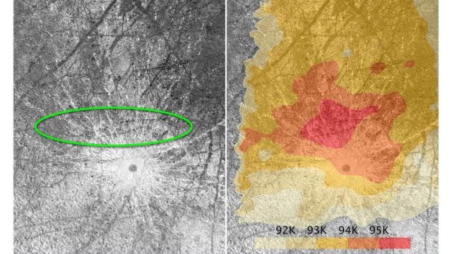 Food on Enceladus, Old Faithful on Europa Strengthen Case