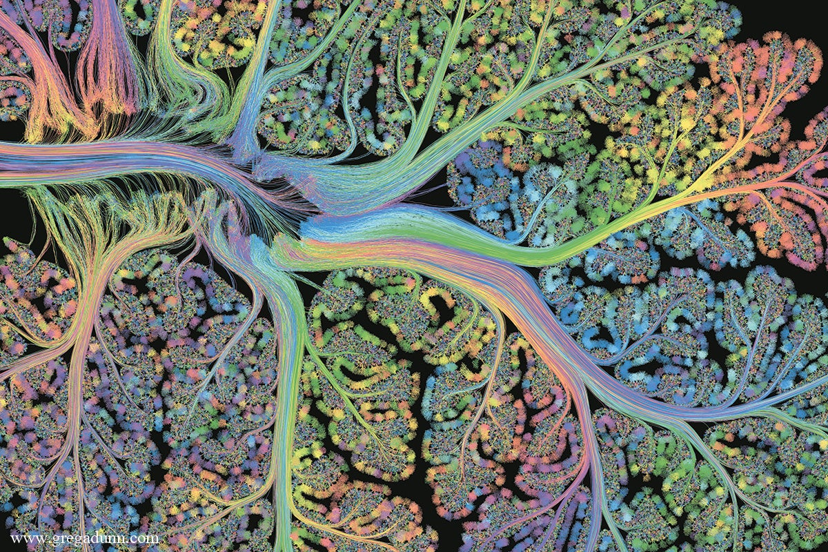 Watch the Human Brain Come to Life in This Stunning Piece of