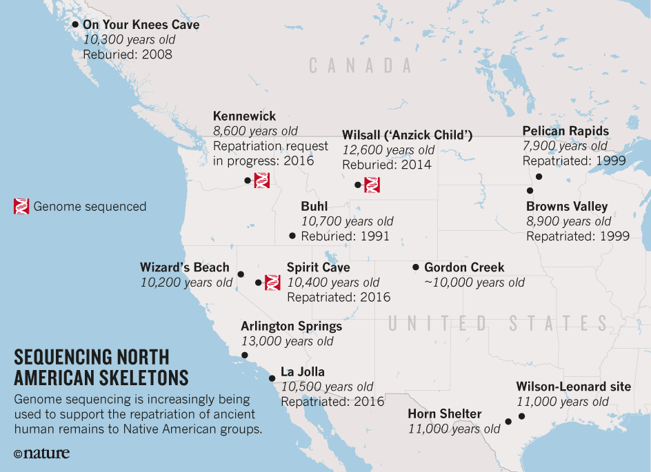 North America's Oldest Mummy Returned to U S  Tribe after