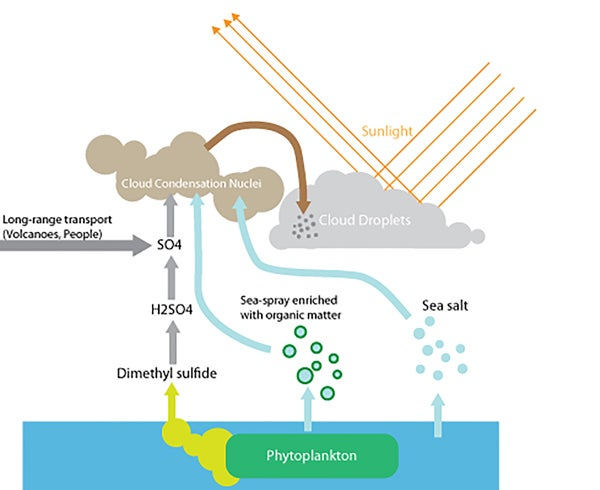 Vt Transport Scheme Pic Klein furthermore Maxresdefault besides Plankton Cloud Infographic together with Px  puter Room Discharge furthermore Img. on aerosol can diagram