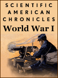 SA Chronicles: World War I