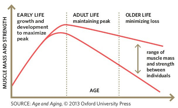 Age and Aging graph