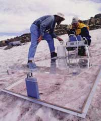 Scientists on snowfield
